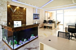 Viking Real Estate & Consultants